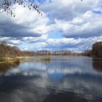 Озеро в лесу :: Андрей Снегерёв