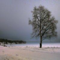 Пейзаж (проба пера) :: Валентин Кузьмин