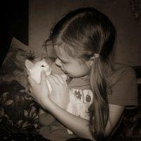 Спокойной ночи... :: Евгеша Сафронова