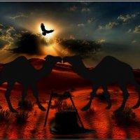 Любовь она и в Африке Любовь. :: Anatol Livtsov