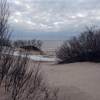 Северодвинск. Весна наступает. Белое море. Аскетичный пейзаж :: Владимир Шибинский
