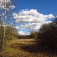 IMG_6362 - Апрель похожий на апрель :: Андрей Лукьянов
