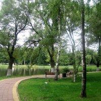 Дорога к городскому озеру :: Елена Семигина