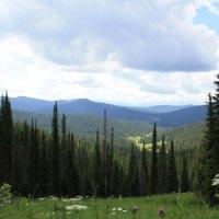 Природный парк Ергаки :: Ирина Королева