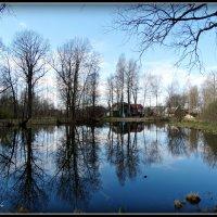 Гладь старинного пруда... :: Fededuard Винтанюк