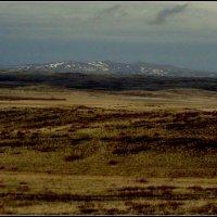 степи Казахстана :: Вячеслав Завражнов