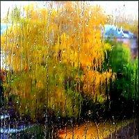 Акварель дождя :: Olenka