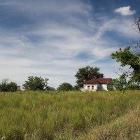 Заброшенный дом в черноземье :: Андрей Синявин