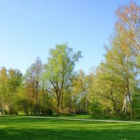 А на пороге нежная весна :: Galina Dzubina