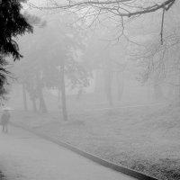Туманный  пейзаж :: Валерия  Полещикова