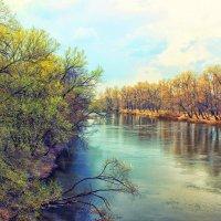 Река Десна весной . :: Кристина Cоль