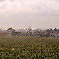 ...утро туманное...Италия, Новента... :: Ольга Нарышкова