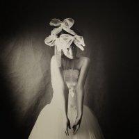 瘋狂的新娘 :: Михаил Останин