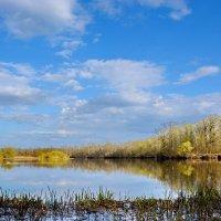 Небо  и  река. :: Валера39 Василевский.
