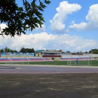Стадион :: Вера Щукина