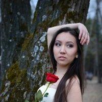 Линария3 :: Mikhail Azarov
