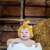 Цыпленочек :: Алёна Жила