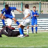 Вратарь сделал что мог... :: Андрей Заломленков
