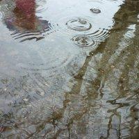 дождь :: Oxi --