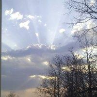 Божий свет :: Татьяна Новикова
