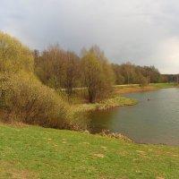 IMG_6791 - Новая техника рыбной ловли :: Андрей Лукьянов
