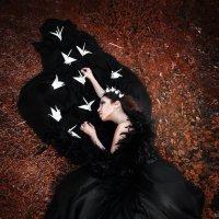 Падший Лебедь :: Виктория Андреева