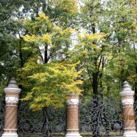 Ограда около храма Спаса на крови :: Елена Семигина
