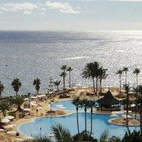 Grand Hotel Anthelia 5*. Пляж :: Елена Павлова (Смолова)