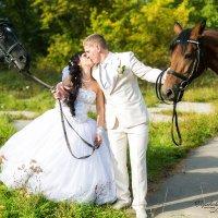 Лошади и любовь :: Marusya Горькова