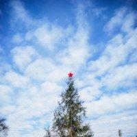 Конец апреля, все еще празднуем Новый год :: Владимир Печенкин