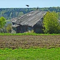 Домик в деревне :: Валерий Талашов