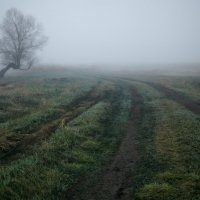 В апрельском тумане... :: Roman Lunin