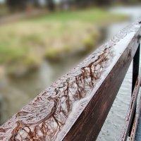 Графика дождя(2) :: Елена Строганова