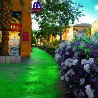 ИМАДЖИНЭЙШН на улице Герцль Хайфа Израиль. :: ФОТО ОХОТНИК