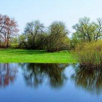 Первою зелёною метелью... :: Лесо-Вед (Баранов)
