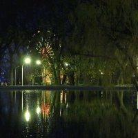 Городской парк. Саратов :: Диана Бурлаченко