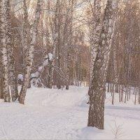 Блеснул мороз, и рады мы проказам матушки-зимы... :: Олег Карташов