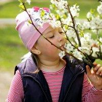 весна пришла :: Наталья Лачкова