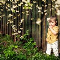 Весна :: Юлия Сакович