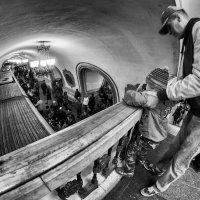 Приходит поезд, светло - синий, берёт людей...и уезжает! :: Ирина Данилова