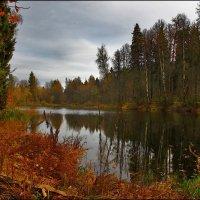 осень :: Дмитрий Анцыферов