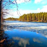 Лесное озеро :: Геннадий Рублёв