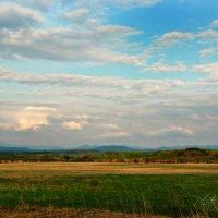 майский пейзаж :: Tatyana Belova