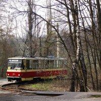 Одинокий трамвай :: Надежда Петрова