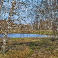 Выезд к озеру :: Дмитрий Конев