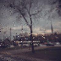 Какую музыку бьёт дождь в стекло? :: Ирина Данилова