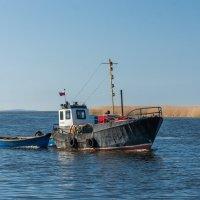За рыбой :: Игорь Вишняков