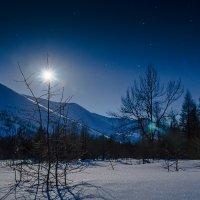 Ночное светило. :: Юрий Харченко