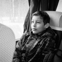 мальчик :: Светлана Кондакова