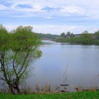 Овстуг, Брянская область, озеро :: Андрей Сотников